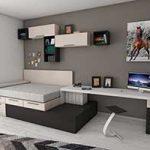 Storage Beds Furniture Ideas